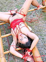 Asian Women jasmine wang 04 bodystocking bound forest